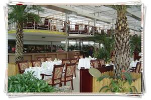 绿色生态餐厅专用板——拜耳智能调温板1