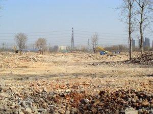 tangjialing_2011