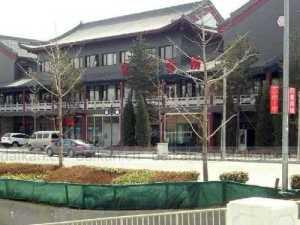 Shengshi Longyuan--its actual appearance